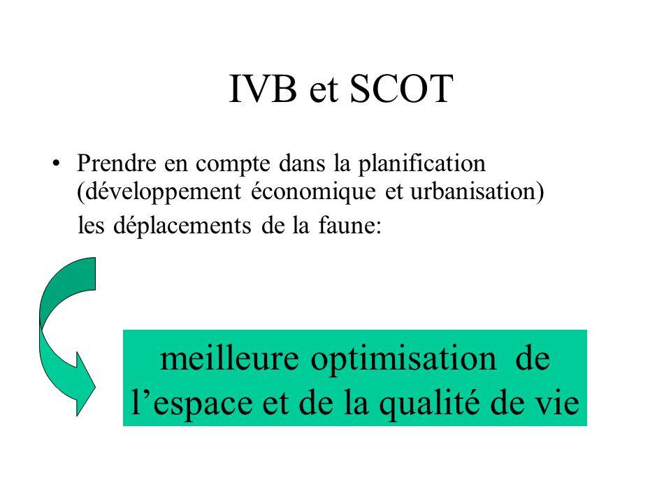IVB et SCOT Prendre en compte dans la planification (développement économique et urbanisation) les déplacements de la faune: meilleure optimisation de