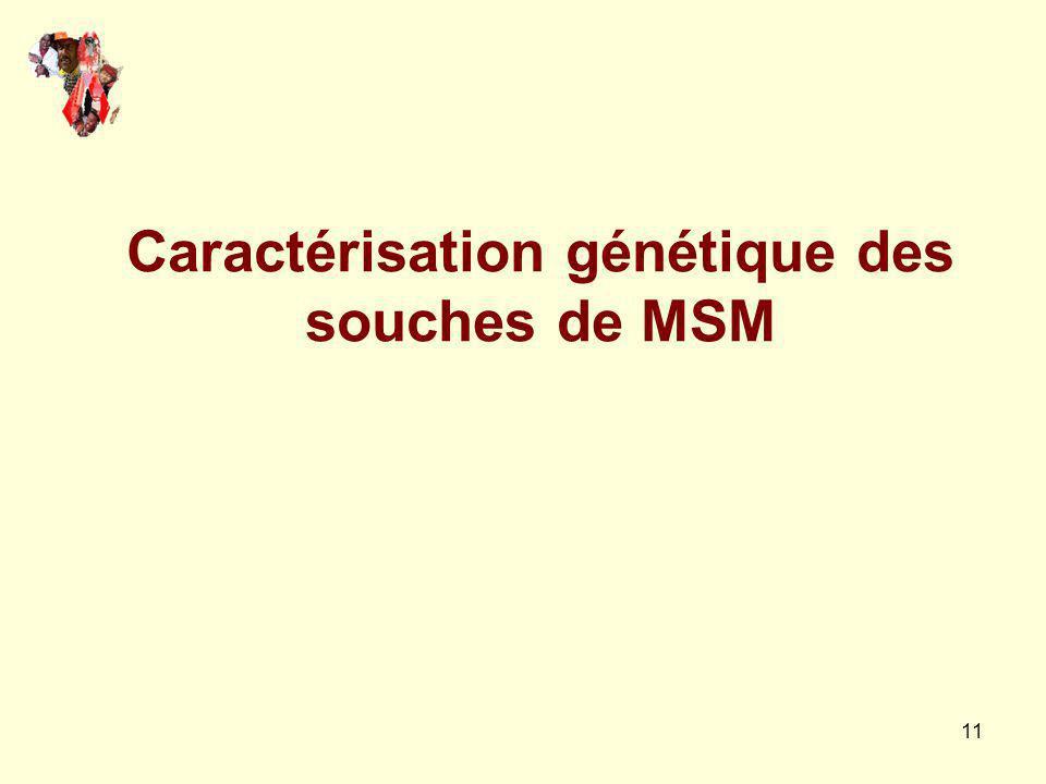 11 Caractérisation génétique des souches de MSM