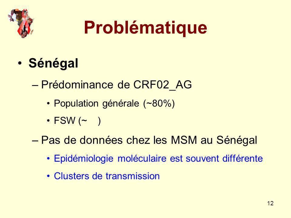 12 Problématique Sénégal –Prédominance de CRF02_AG Population générale (~80%) FSW (~ ) –Pas de données chez les MSM au Sénégal Epidémiologie moléculai