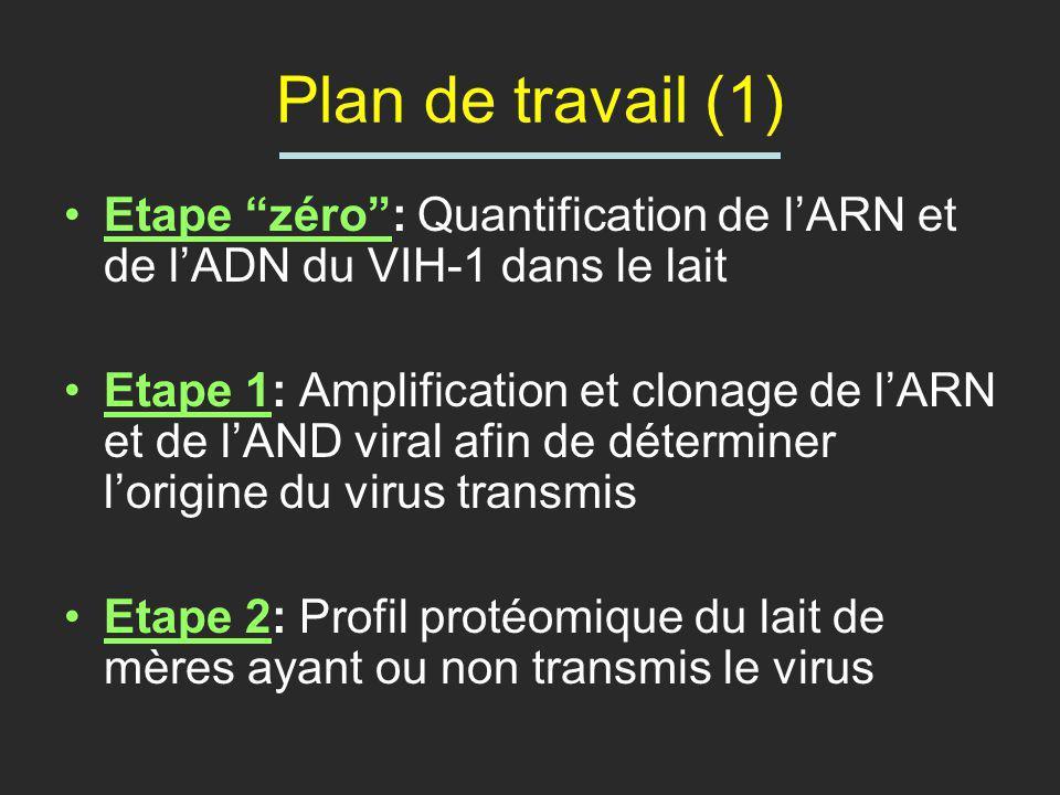 Plan de travail (1) Etape zéro: Quantification de lARN et de lADN du VIH-1 dans le lait Etape 1: Amplification et clonage de lARN et de lAND viral afi