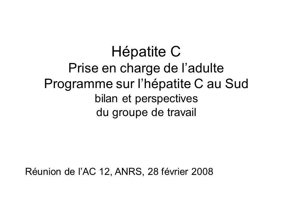 Hépatite C Prise en charge de ladulte Programme sur lhépatite C au Sud bilan et perspectives du groupe de travail Réunion de lAC 12, ANRS, 28 février 2008