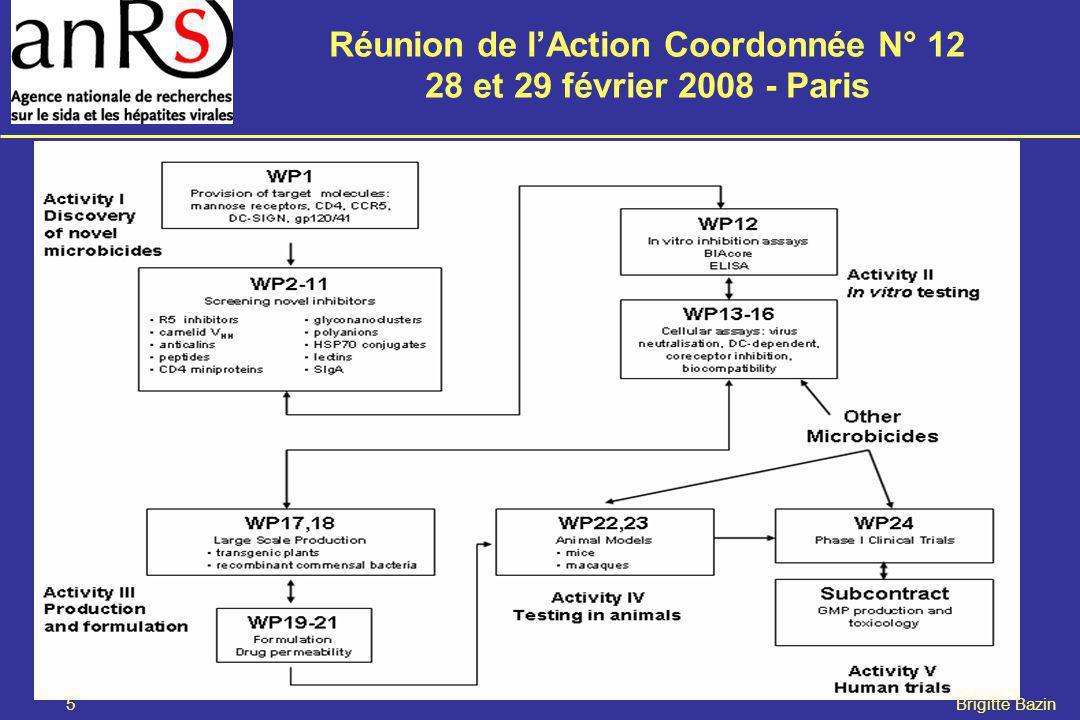 Réunion de lAction Coordonnée N° 12 28 et 29 février 2008 - Paris 5 Brigitte Bazin