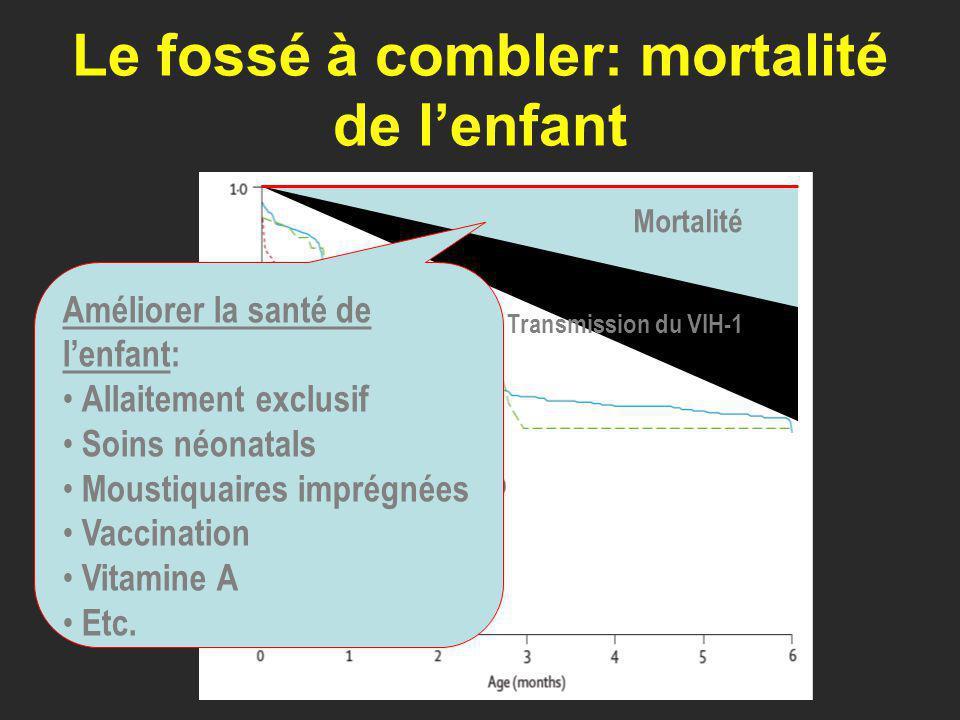 Le fossé à combler: mortalité de lenfant Transmission du VIH-1 Mortalité Améliorer la santé de lenfant: Allaitement exclusif Soins néonatals Moustiquaires imprégnées Vaccination Vitamine A Etc.