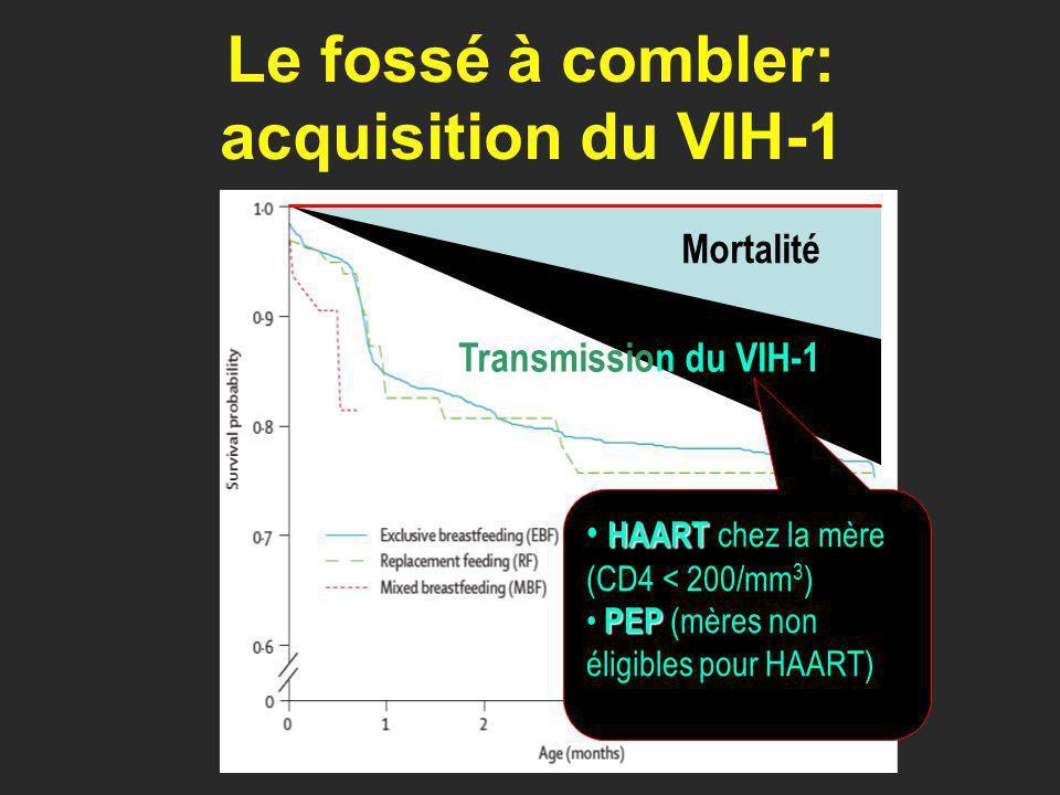 Le fossé à combler: acquisition du VIH-1 Transmission du VIH-1 Mortalité HAART HAART chez la mère (CD4 < 200/mm 3 ) PEP PEP (mères non éligibles pour HAART)