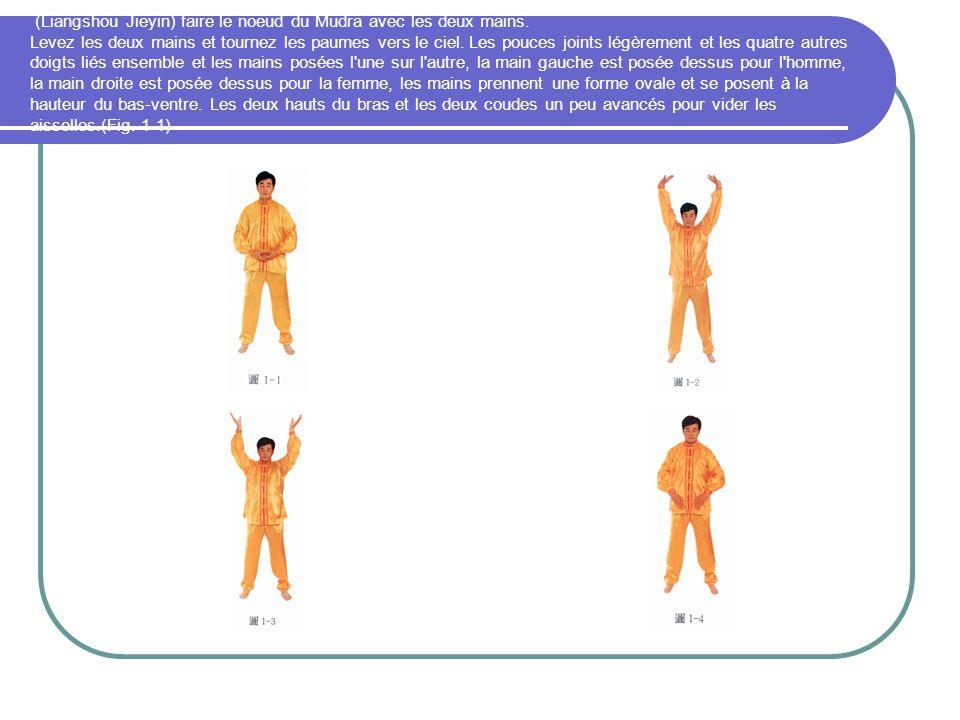 (Liangshou Jieyin) faire le noeud du Mudra avec les deux mains. Levez les deux mains et tournez les paumes vers le ciel. Les pouces joints légèrement