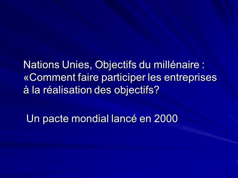 Nations Unies, Objectifs du millénaire : «Comment faire participer les entreprises à la réalisation des objectifs? Nations Unies, Objectifs du milléna