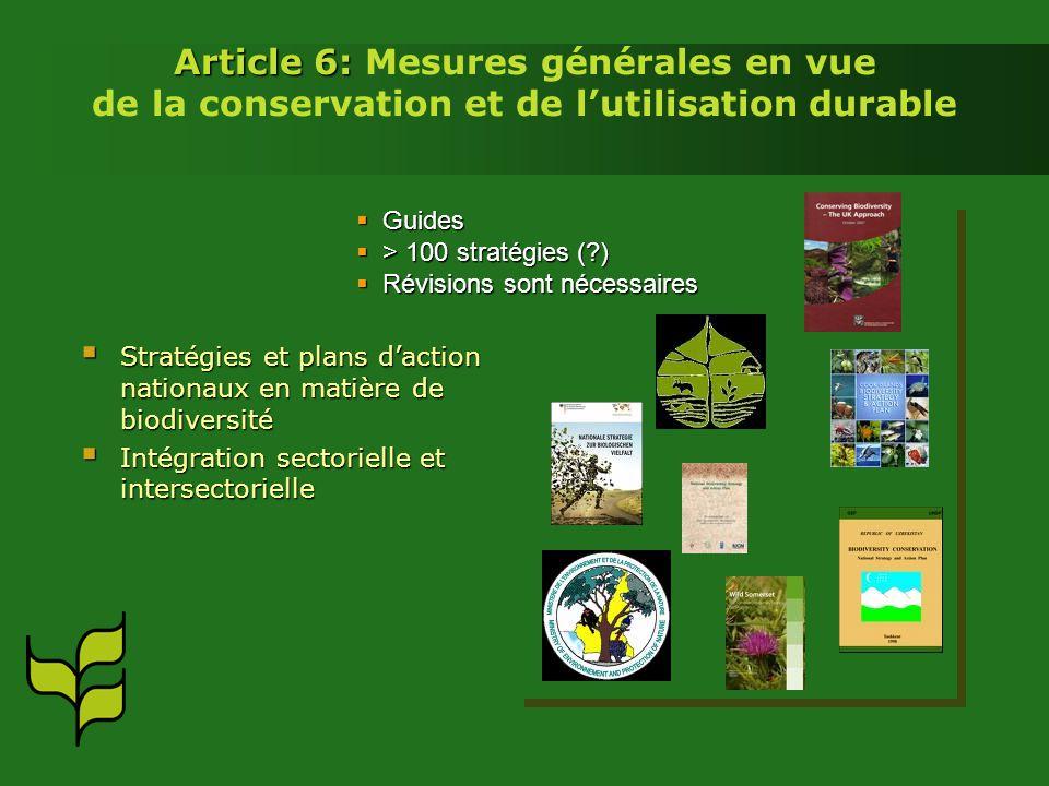 Article 6: Article 6: Mesures générales en vue de la conservation et de lutilisation durable Stratégies et plans daction nationaux en matière de biodi