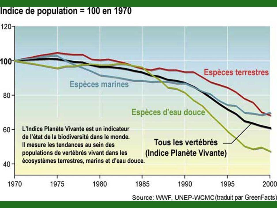 Au cours des derniers siècles, les taux d extinction sont devenus cent a mille fois plus élevés que les taux de fond typiques de toute l histoire de la planète.