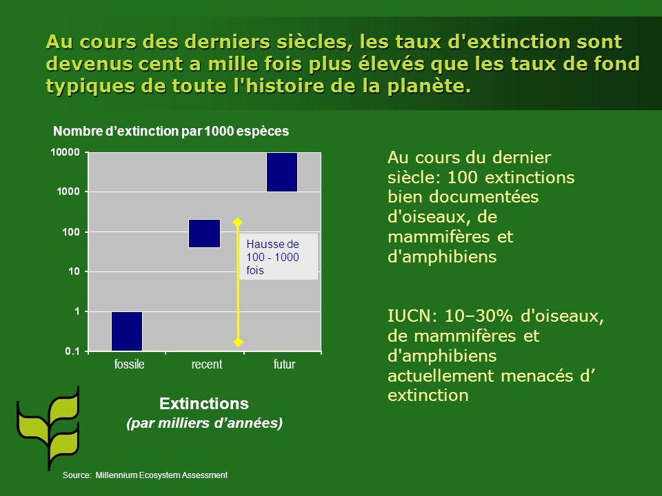 Au cours des derniers siècles, les taux d'extinction sont devenus cent a mille fois plus élevés que les taux de fond typiques de toute l'histoire de l