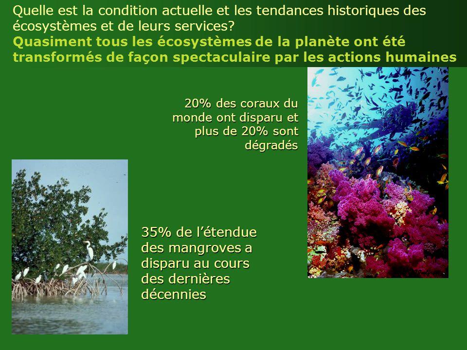 20% des coraux du monde ont disparu et plus de 20% sont dégradés 35% de létendue des mangroves a disparu au cours des dernières décennies Quelle est l