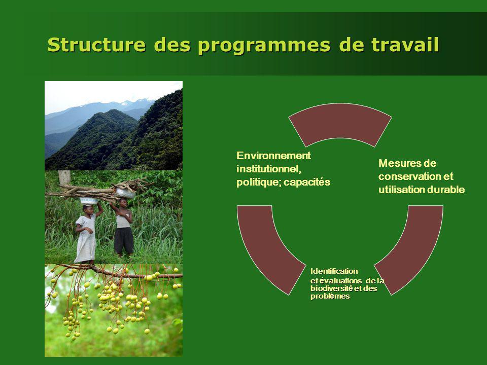 Structure des programmes de travail Mesures de conservation et utilisation durable Environnement institutionnel, politique; capacit é s Identification