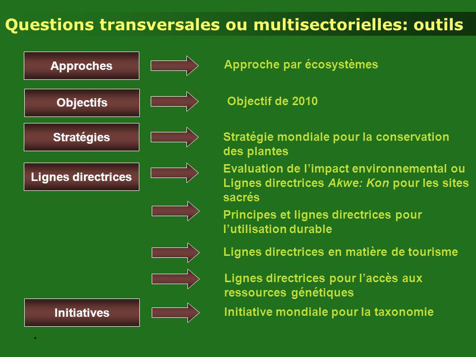 Approches Stratégie mondiale pour la conservation des plantes Initiatives Stratégies Lignes directrices Objectifs Initiative mondiale pour la taxonomi