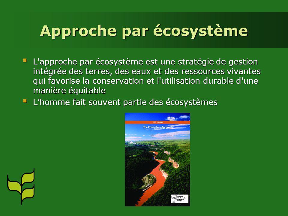 Approche par écosystème L approche par écosystème est une stratégie de gestion intégrée des terres, des eaux et des ressources vivantes qui favorise la conservation et l utilisation durable d une manière équitable L approche par écosystème est une stratégie de gestion intégrée des terres, des eaux et des ressources vivantes qui favorise la conservation et l utilisation durable d une manière équitable Lhomme fait souvent partie des écosystèmes Lhomme fait souvent partie des écosystèmes