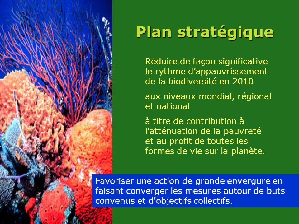 Plan stratégique Réduire de façon significative le rythme dappauvrissement de la biodiversité en 2010 aux niveaux mondial, régional et national à titre de contribution à l atténuation de la pauvreté et au profit de toutes les formes de vie sur la planète.