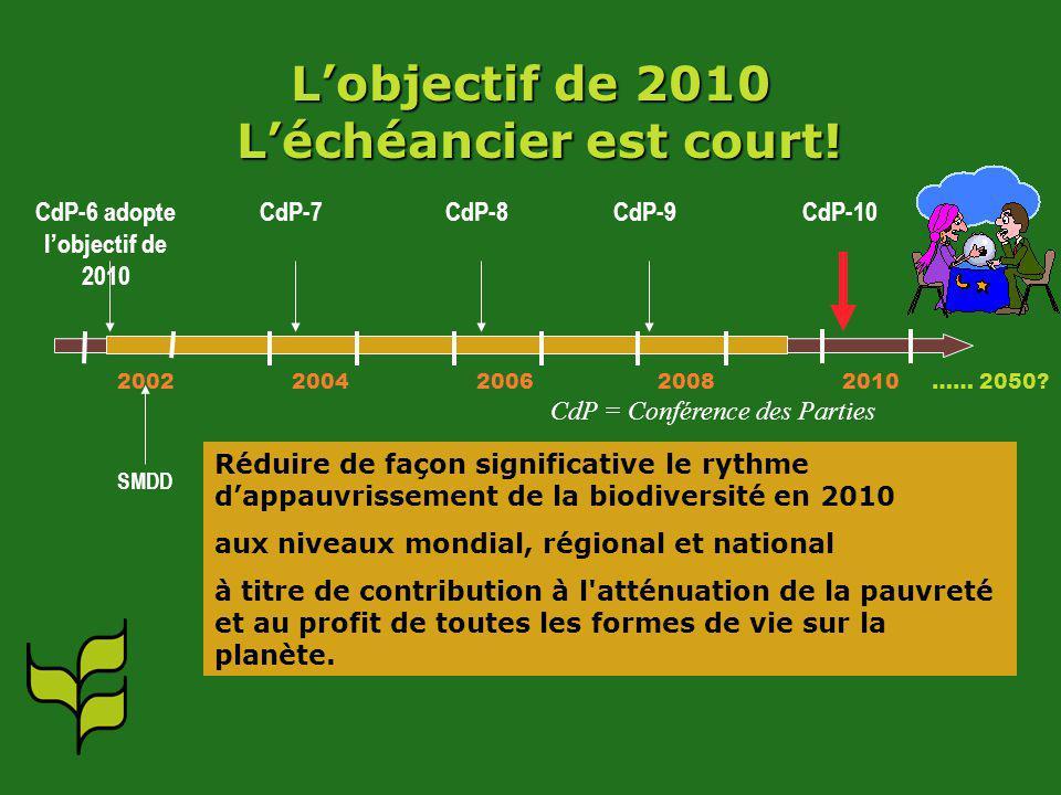 Lobjectif de 2010 Léchéancier est court! 2002 2004 2006 2008 2010 …… 2050? CdP-6 adopte lobjectif de 2010 SMDD CdP-7CdP-8CdP-9CdP-10 CdP = Conférence