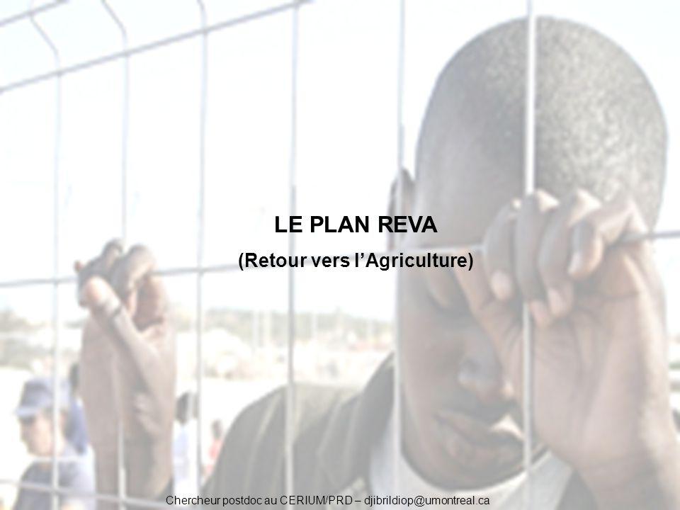 Chercheur postdoc au CERIUM/PRD – djibrildiop@umontreal.ca LE PLAN REVA (Retour vers lAgriculture)