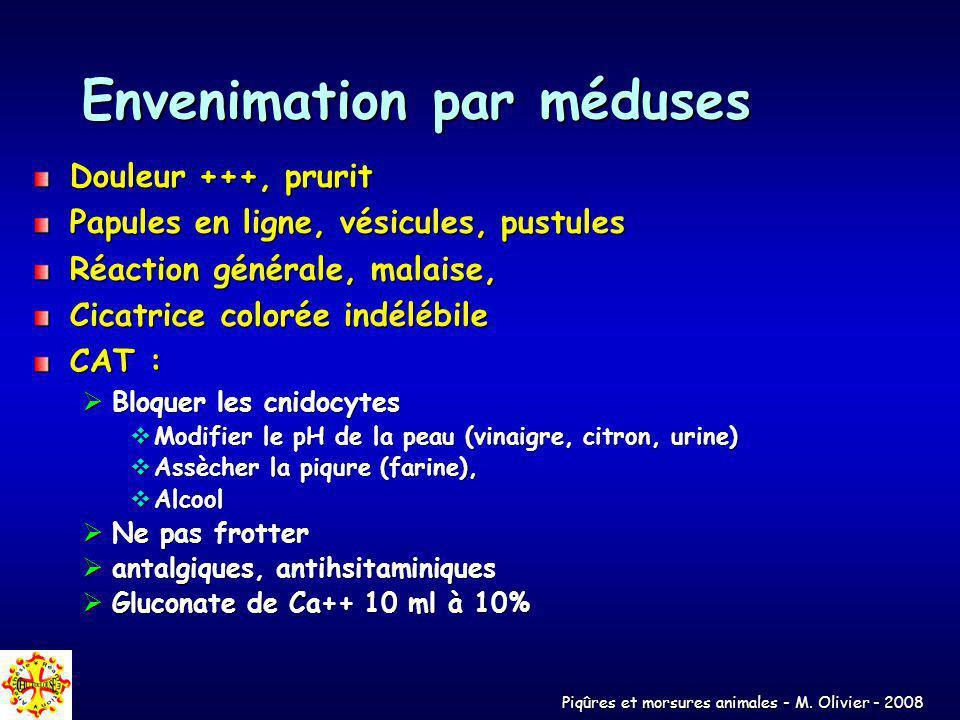 Piqûres et morsures animales - M. Olivier - 2008 Envenimation par méduses Douleur +++, prurit Papules en ligne, vésicules, pustules Réaction générale,