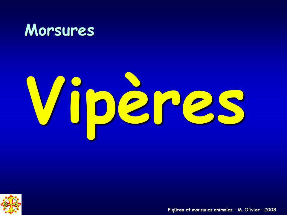 Piqûres et morsures animales - M. Olivier - 2008 Morsures Vipères