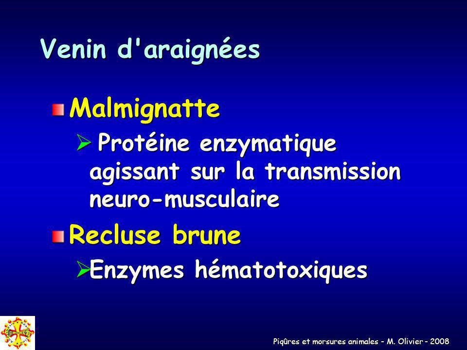Piqûres et morsures animales - M. Olivier - 2008 Venin d'araignées Malmignatte Protéine enzymatique agissant sur la transmission neuro-musculaire Prot
