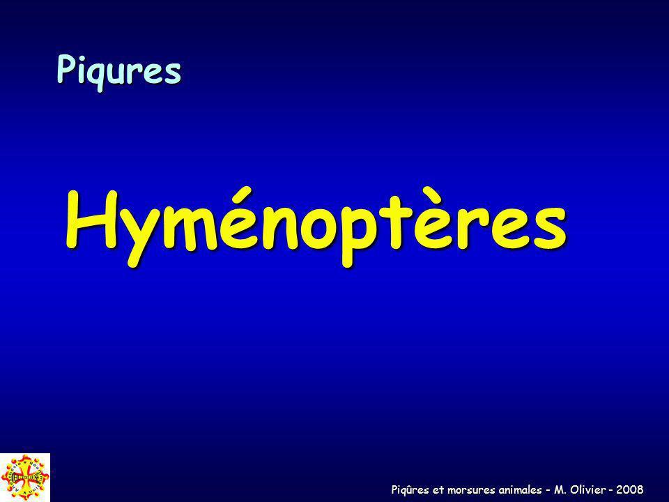 Piqûres et morsures animales - M. Olivier - 2008 Piqures Hyménoptères
