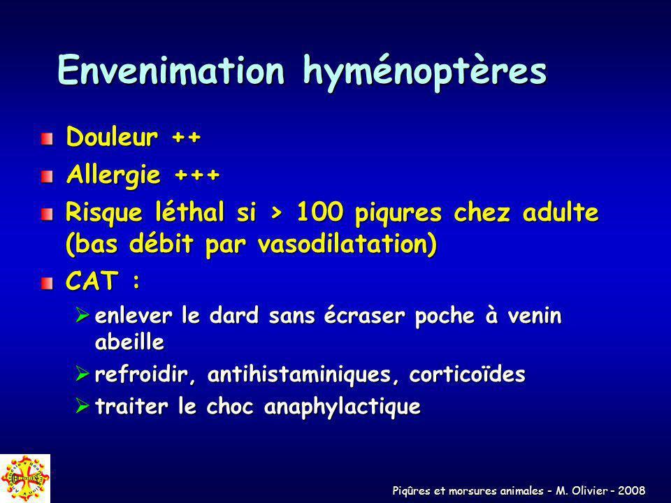 Piqûres et morsures animales - M. Olivier - 2008 Envenimation hyménoptères Douleur ++ Allergie +++ Risque léthal si > 100 piqures chez adulte (bas déb