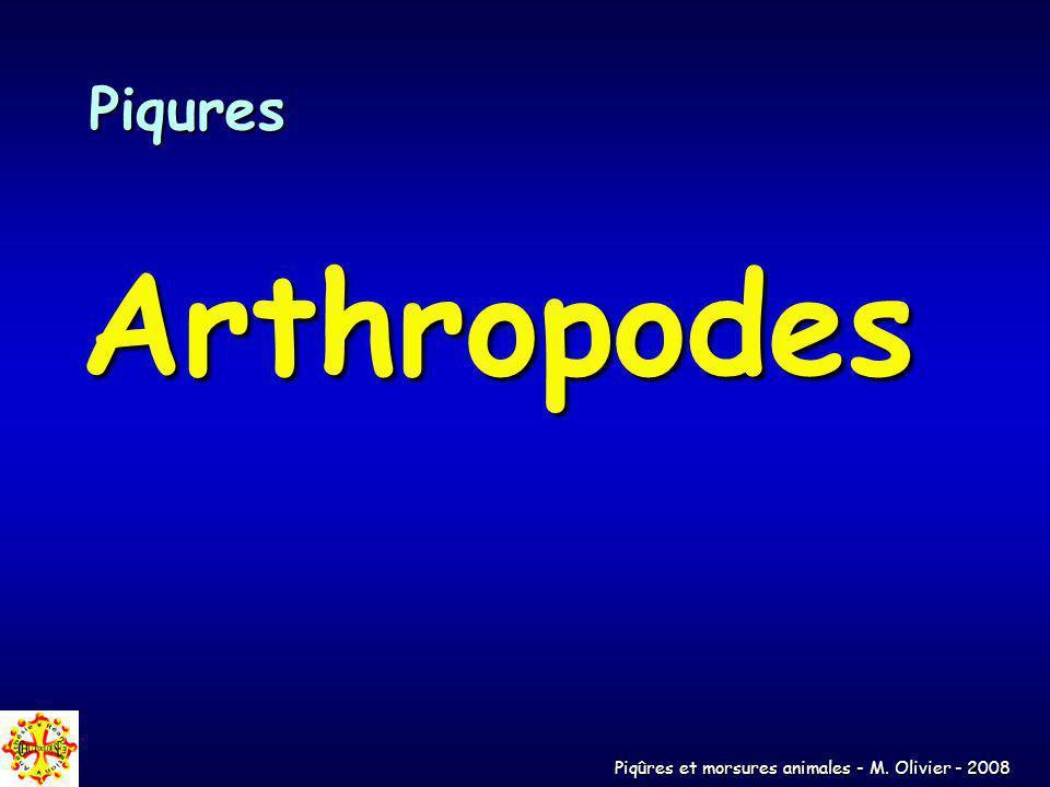 Piqûres et morsures animales - M. Olivier - 2008 Piqures Arthropodes