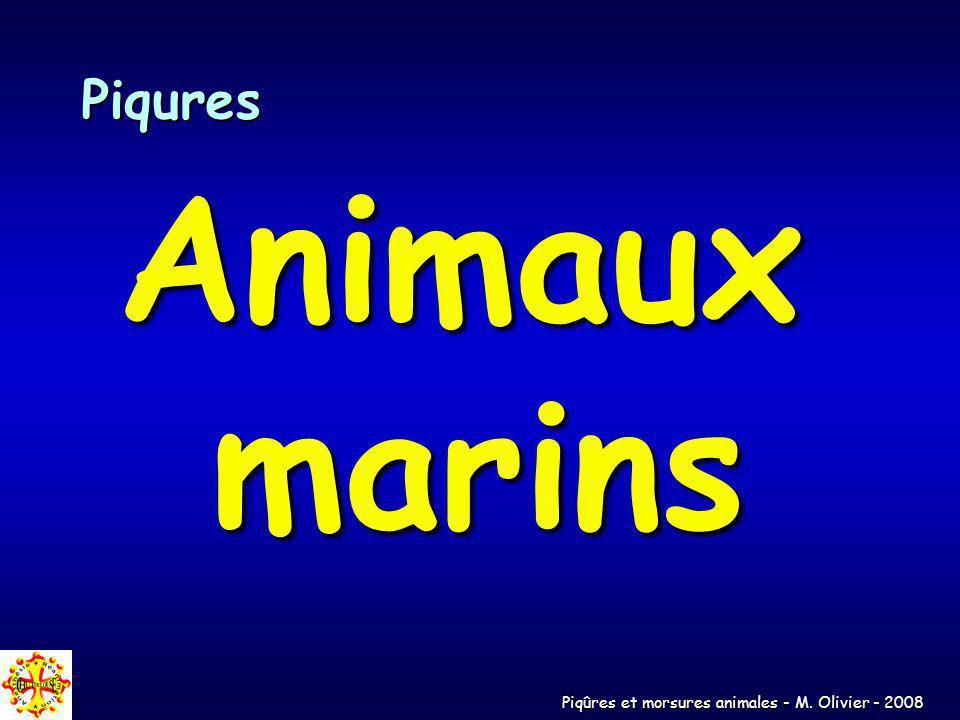 Piqûres et morsures animales - M. Olivier - 2008 Piqures Animaux marins