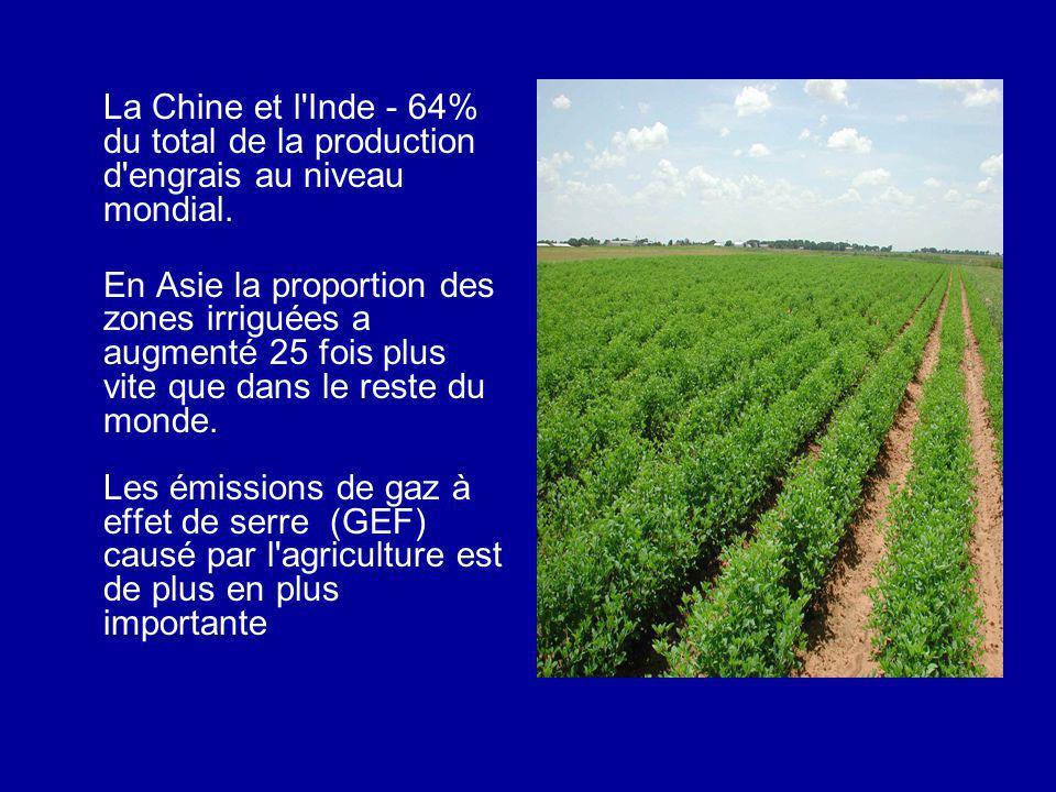 La Chine et l'Inde - 64% du total de la production d'engrais au niveau mondial. En Asie la proportion des zones irriguées a augmenté 25 fois plus vite