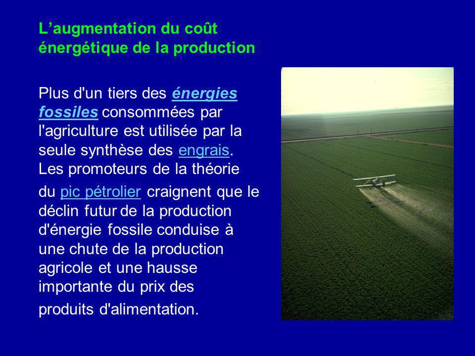 Laugmentation du coût énergétique de la production Plus d'un tiers des énergies fossiles consommées par l'agriculture est utilisée par la seule synthè