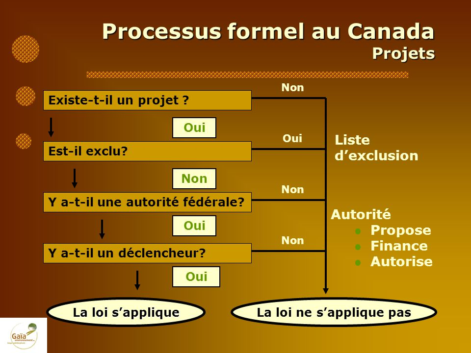 Processus formel au Canada Projets Liste dexclusion Est-il exclu? Non Oui Existe-t-il un projet ? Oui La loi ne sapplique pas Non Autorité Propose Fin