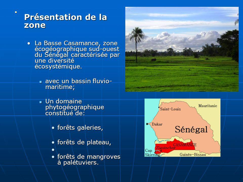 Présentation de la zone Présentation de la zone La Basse Casamance, zone écogéographique sud-ouest du Sénégal caractérisée par une diversité écosystém
