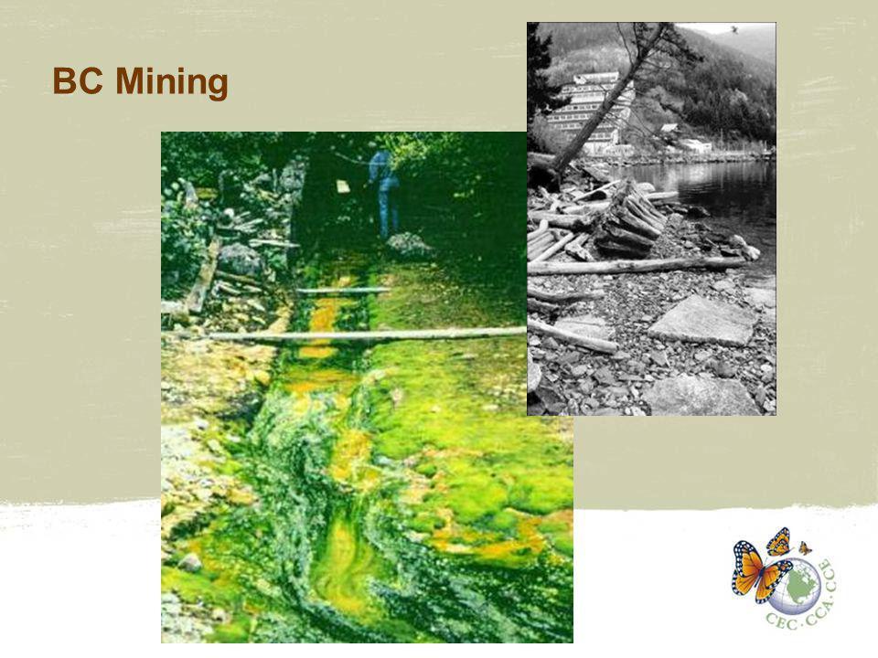 BC Mining