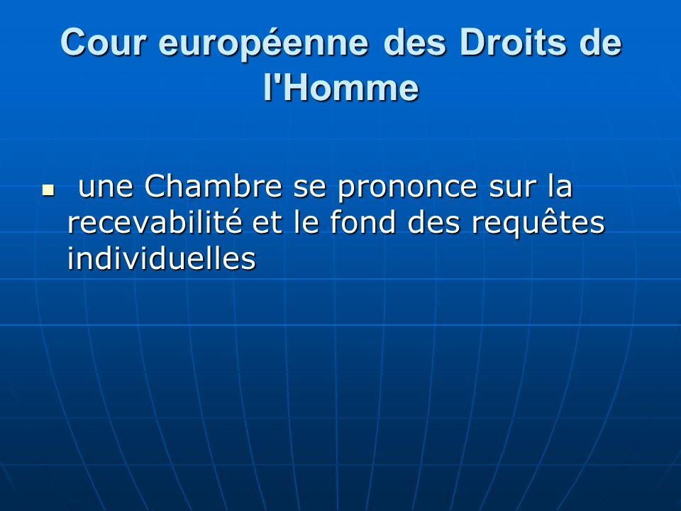 Cour européenne des Droits de l'Homme une Chambre se prononce sur la recevabilité et le fond des requêtes individuelles une Chambre se prononce sur la