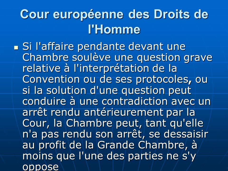 Cour européenne des Droits de l'Homme Si l'affaire pendante devant une Chambre soulève une question grave relative à l'interprétation de la Convention
