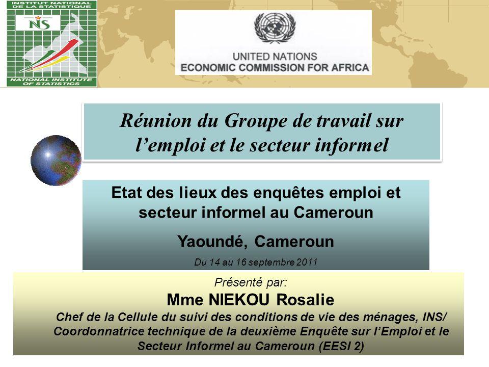Etat des lieux des enquêtes emploi et secteur informel au Cameroun Yaoundé, Cameroun Du 14 au 16 septembre 2011 Présenté par: Mme NIEKOU Rosalie Chef