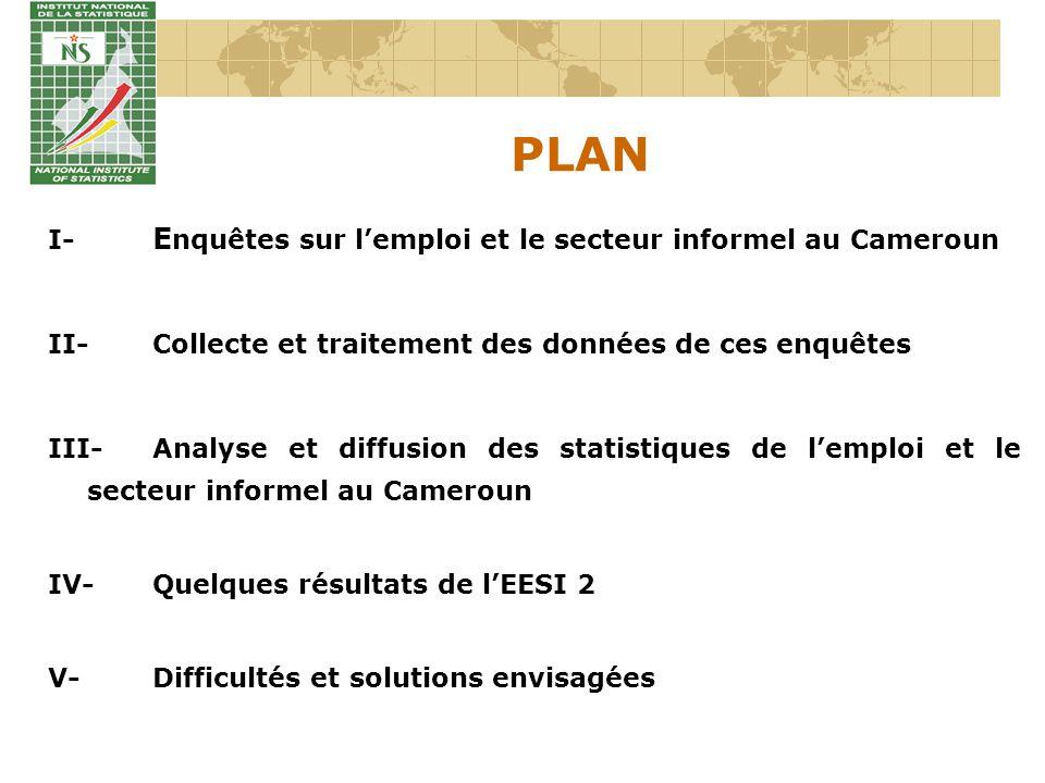 PLAN I- E nquêtes sur lemploi et le secteur informel au Cameroun II-Collecte et traitement des données de ces enquêtes III-Analyse et diffusion des st