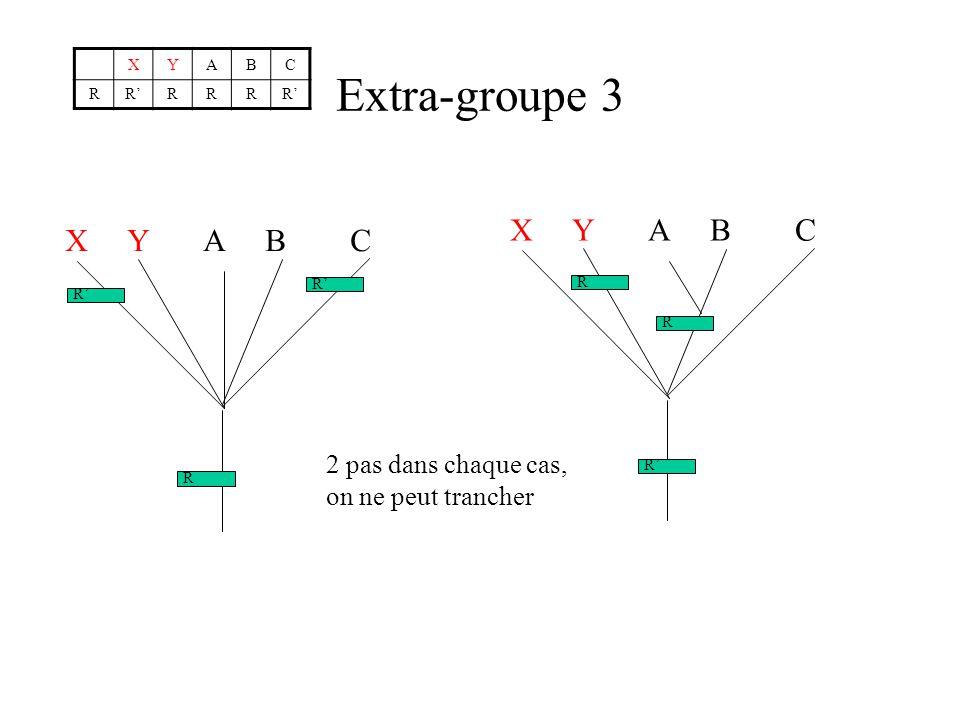 Extra-groupe 3 XYABC RRRRRR X Y A B C R R R R R R 2 pas dans chaque cas, on ne peut trancher