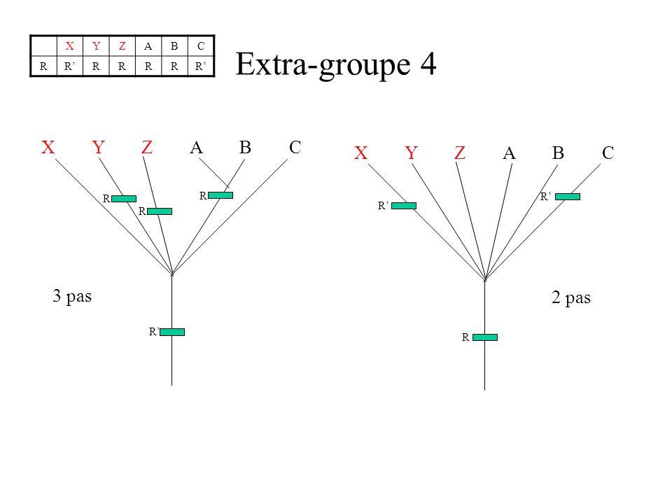 Extra-groupe 4 XYZABC RRRRRRR X Y Z A B C R R R R 3 pas X Y Z A B C R R R 2 pas