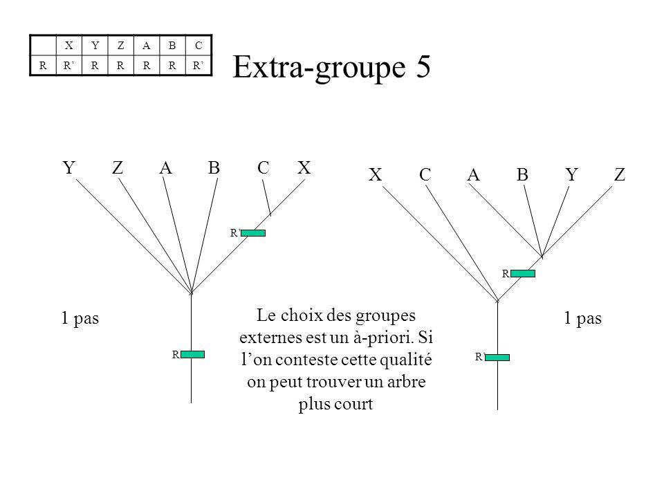 Extra-groupe 5 Y Z A B C X R R 1 pas X C A B Y Z R R 1 pas Le choix des groupes externes est un à-priori.