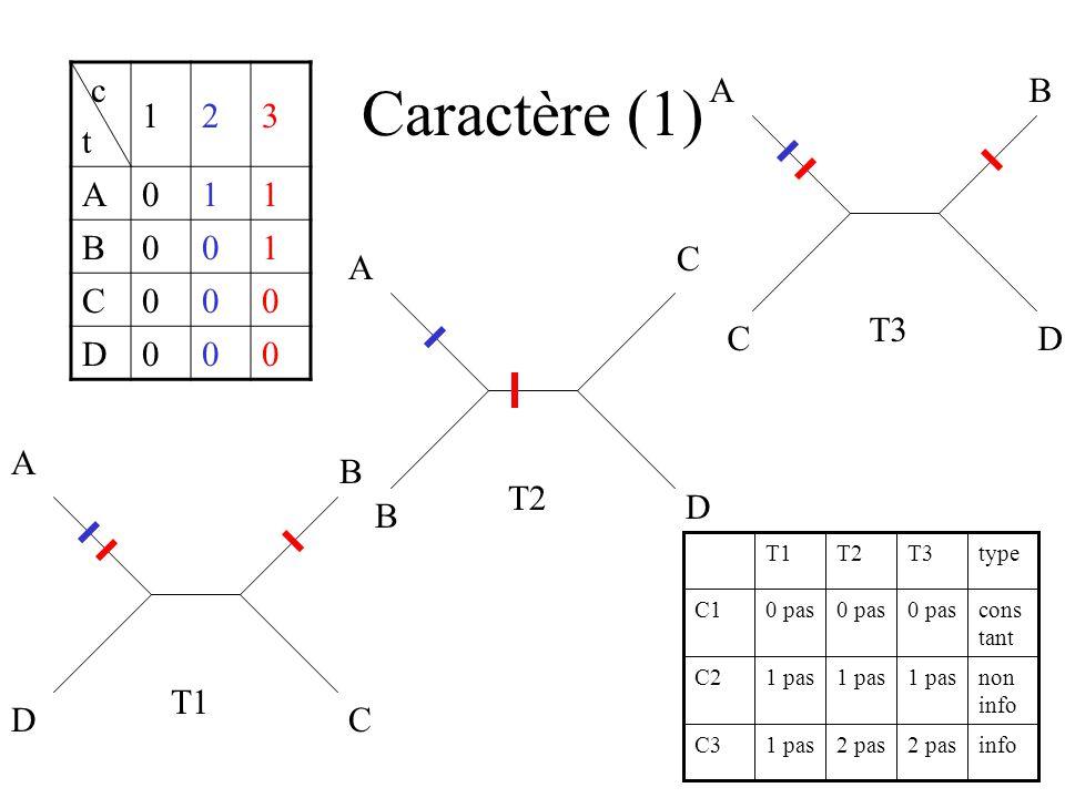 Caractère (1) c t 123 A011 B001 C000 D000 A B C D T2 A D B C T3 A B CD T1 info2 pas 1 pasC3 non info 1 pas C2 cons tant 0 pas C1 typeT3T2T1