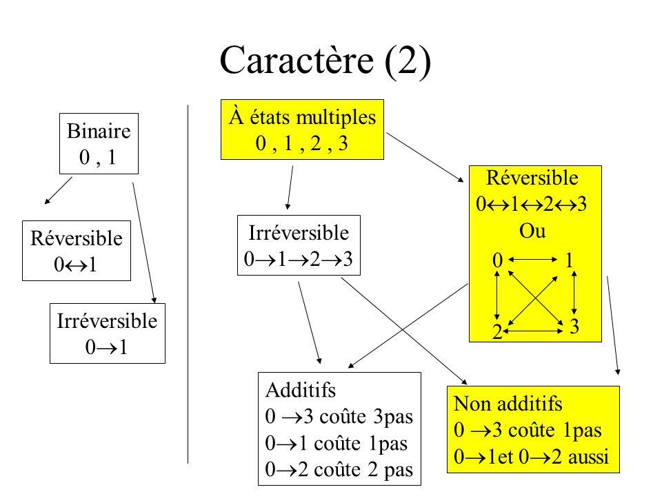 Caractère (2) Binaire 0, 1 À états multiples 0, 1, 2, 3 Réversible 0 1 Irréversible 0 1 Irréversible 0 1 2 3 Additifs 0 3 coûte 3pas 0 1 coûte 1pas 0 2 coûte 2 pas Non additifs 0 3 coûte 1pas 0 1et 0 2 aussi Réversible 0 1 2 3 Ou 01 2 3