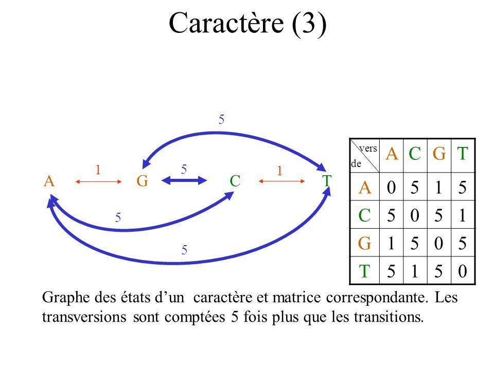 Caractère (3) AGCT 1 1 5 5 5 5 vers de ACGT A0515 C5051 G1505 T5150 Graphe des états dun caractère et matrice correspondante.