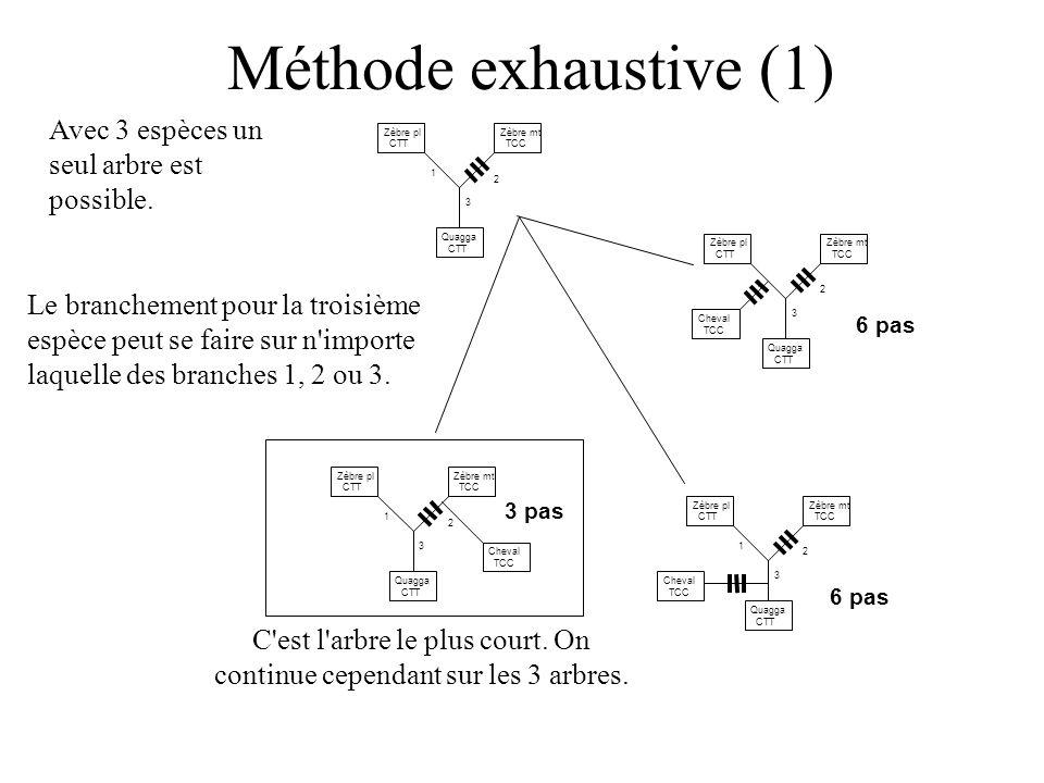 Méthode exhaustive (1) Avec 3 espèces un seul arbre est possible.