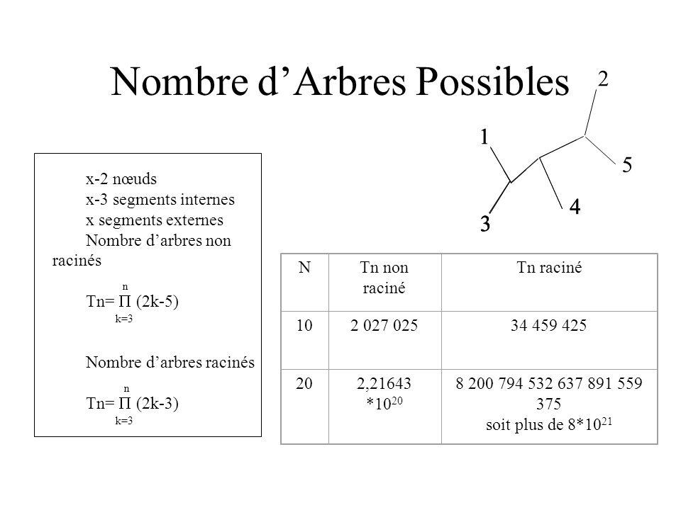 Nombre dArbres Possibles 102 027 02534 459 425 202,21643 *10 20 8 200 794 532 637 891 559 375 soit plus de 8*10 21 NTn non raciné Tn raciné x-2 nœuds x-3 segments internes x segments externes Nombre darbres non racinés n Tn= (2k-5) k=3 Nombre darbres racinés n Tn= (2k-3) k=3 1 2 3 1 2 3 4 1 2 3 4 5