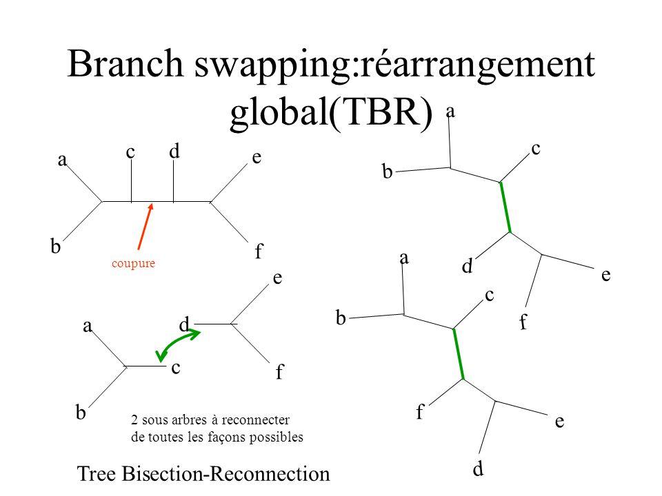 Branch swapping:réarrangement global(TBR) a e f b d c coupure a b c e f d 2 sous arbres à reconnecter de toutes les façons possibles a b c e f d a b c e d f Tree Bisection-Reconnection