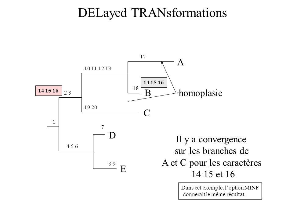 DELayed TRANsformations E D 8 9 7 4 5 6 1 2 3 C 19 20 10 11 12 13 B A 17 18 Il y a convergence sur les branches de A et C pour les caractères 14 15 et 16 Dans cet exemple, loption MINF donnerait le même résultat.