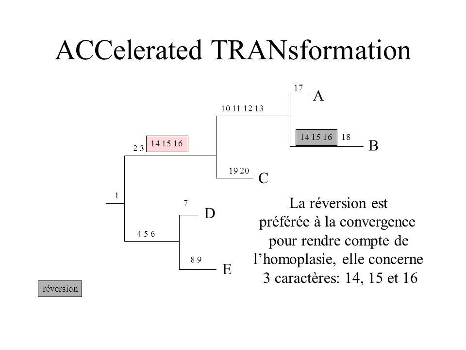 ACCelerated TRANsformation réversion C E D 8 9 7 4 5 6 1 2 3 19 20 10 11 12 13 B A 17 18 14 15 16 La réversion est préférée à la convergence pour rendre compte de lhomoplasie, elle concerne 3 caractères: 14, 15 et 16 14 15 16