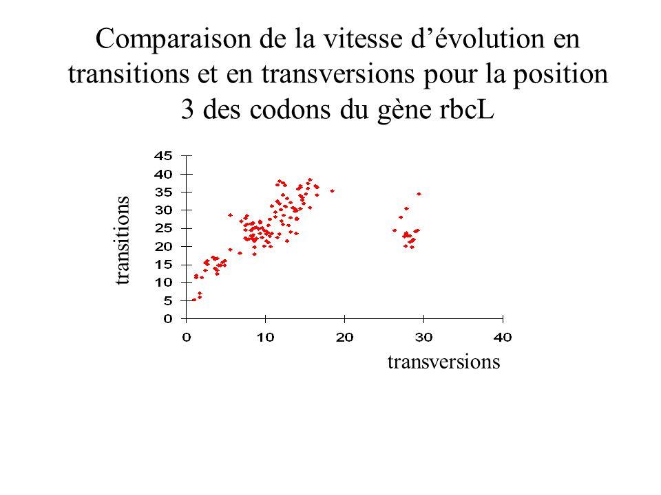 Comparaison de la vitesse dévolution en transitions et en transversions pour la position 3 des codons du gène rbcL transversions transitions