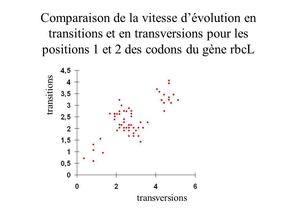 Comparaison de la vitesse dévolution en transitions et en transversions pour les positions 1 et 2 des codons du gène rbcL transversions transitions