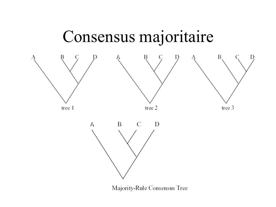 Consensus majoritaire